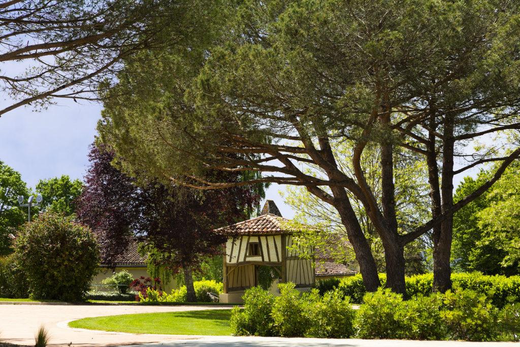 Pigeonnier et pins du vignoble de Saint-Aubin