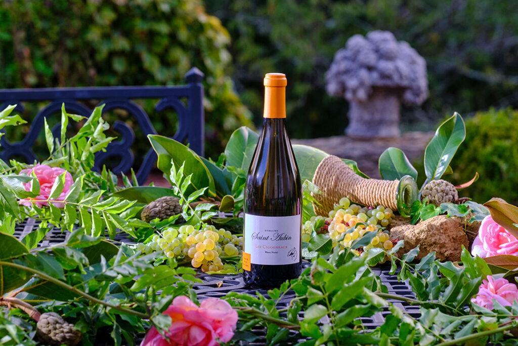 Vigne de Saint-Aubin