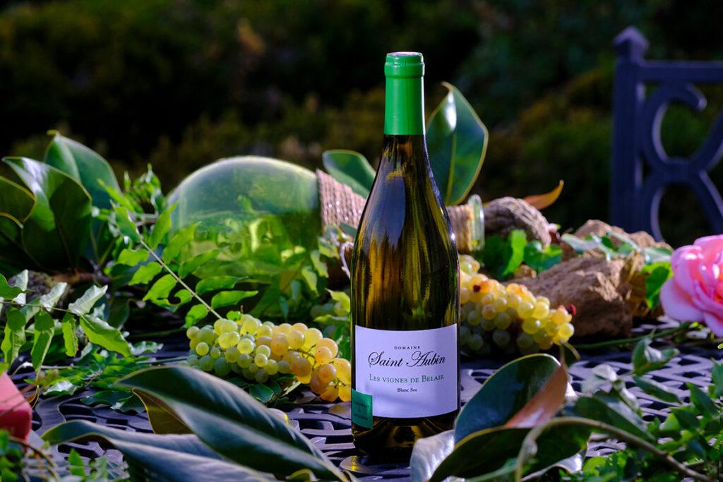 vigne de BelAir