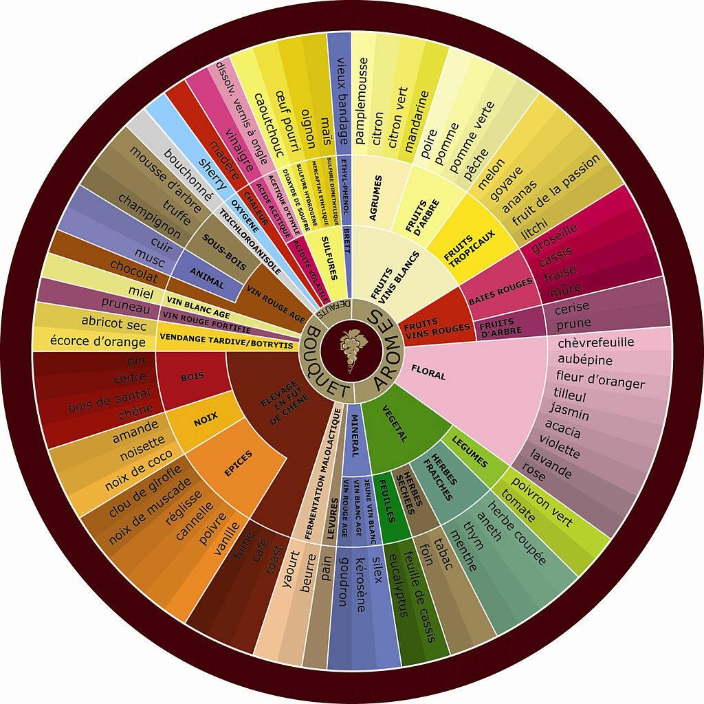 roue des arômes du vin