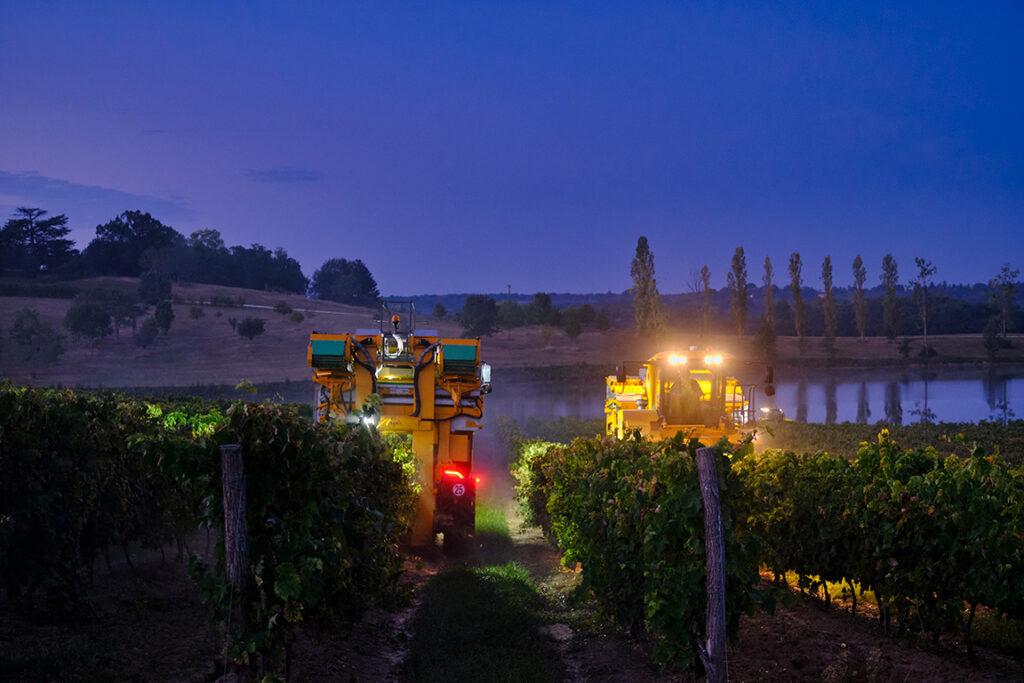 Vignoble de Saint-Aubin la nuit