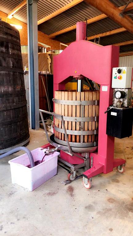 Vignes et vinification vin rouge